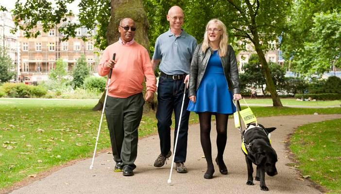 Na foto, três pessoas com deficiência, cegas, andando em um parque, uma delas é mulher e segura a coleira de um cão guia.